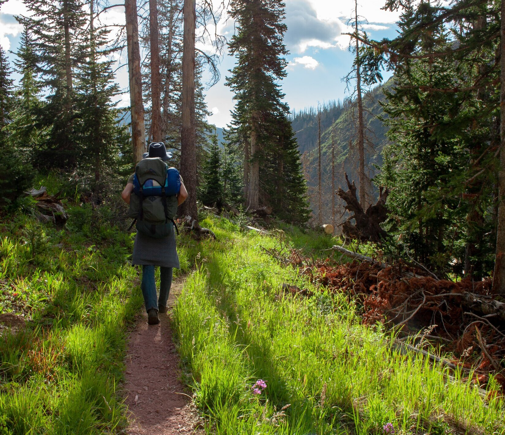 Hiking around Vallecito